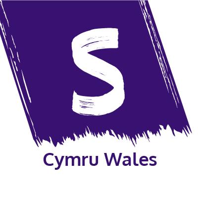 Publications in Welsh – Stroke